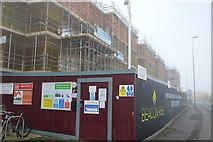 TL4658 : New development, Newmarket Rd by N Chadwick