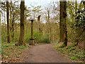 SE2712 : Yorkshire Sculpture Park, The Obelisk in Bridge Royd Wood by David Dixon