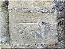 TQ9220 : Ordnance Survey Cut Mark with Bolt by Peter Wood