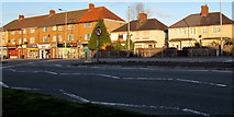 ST3090 : Houses and shops, Malpas Road, Newport by Jaggery
