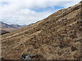 NN0599 : On the steep hillside of Druim na Geid Salaich by Richard Law
