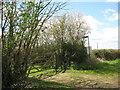 SP7579 : Midshires Way near Kelmarsh-Northants by Martin Richard Phelan