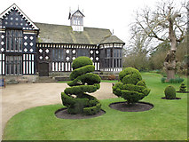 SD4616 : Topiary, Rufford Old Hall garden by David Hawgood