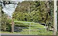 J4058 : Field gate, Saintfield (April 2016) by Albert Bridge