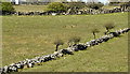 J3958 : Drystone walls, Saintfield - April 2016(2) by Albert Bridge