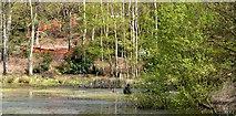 "SU9471 : Construction of location set in Pond, ""Annihilation"" by Phillip Williams"