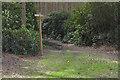 SU9353 : Waymarker, Standinghill Wood by Alan Hunt