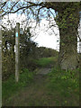 TM1452 : Footpath off Bull's Road by Adrian Cable