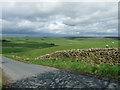 SE1866 : Farmland near Pateley Bridge (1) by Stephen Richards