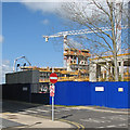 TL4654 : The new Papworth Hospital taking shape by John Sutton