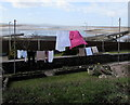 SS5697 : Washing on lines above the Loughor Estuary by Jaggery