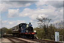 TQ4023 : 'Bluebell Special' by Peter Trimming