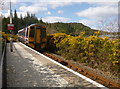 NG8133 : Train leaving Duncraig station by Craig Wallace