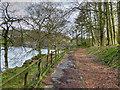 SE0218 : Path Around Ryburn Reservoir by David Dixon