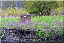 SE2536 : Kirkstall Abbey, River Aire,  Abbey Road, Leeds by Mark Stevenson