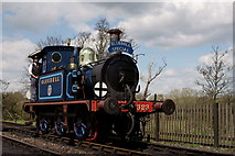 TQ4023 : 'Bluebell' at Sheffield Park by Peter Trimming