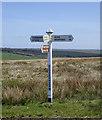 SS2620 : Signpost on Bursdon Moor, Devon by Roger  Kidd