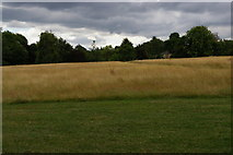 TQ3870 : View off the Green Chain walk, southern edge of Beckenham Place Park by Christopher Hilton