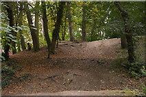 TQ3870 : Trees beside the path, Beckenham Place Park by Christopher Hilton