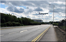 TQ0975 : Eastchurch Road southwards by Andrew Tatlow