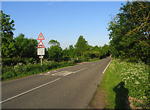SP7389 : Leicester Lane towards Great Bowden by Andrew Tatlow