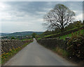 SE0443 : Hollins Bank Lane near Steeton (1) by Stephen Richards