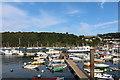 SX8751 : Dartmouth, Dart Harbour (1) by Chris' Buet