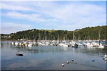 SX8851 : Dartmouth, Dart Harbour (3) by Chris' Buet
