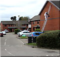 ST1479 : Working on a ladder, Hailey Court, Llandaff North, Cardiff by Jaggery