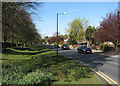 SK5239 : Wollaton Road on a May morning by John Sutton