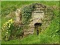 SO5874 : Jubilee well, Hope Bagot by Alan Murray-Rust