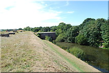 SU5902 : Moat around Fort Brockhurst (12) by Barry Shimmon