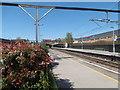 TQ4687 : Goodmayes station by Marathon