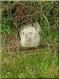 SO5875 : Milestone near Cleehill by Alan Murray-Rust