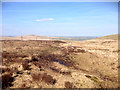 SD9817 : Marshy Path on Rishworth Moor by David Dixon