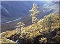 NN1970 : Allt Coire nan Laogh headwaters by Alan Reid