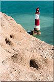 TV5795 : Rabbit burrows by Ian Capper
