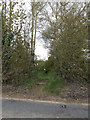 TM1550 : Footpath off Main Road by Geographer