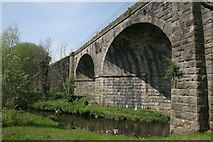 NS5160 : Salterland Viaduct by Richard Sutcliffe