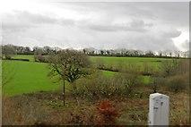 SX5857 : South Devon Countryside by N Chadwick