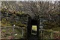 NN3233 : West Highland Way squeezes under West Highland Railway by Chris Heaton