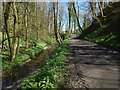 NS3876 : Path to the Renton Road by Lairich Rig