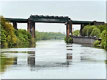 SJ7293 : Manchester Ship Canal, Irlam Railway Viaduct by David Dixon
