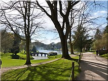ST7733 : Palladian bridge and lake, Stourhead Gardens by Derek Voller