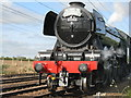 NT5179 : Flying Scotsman at Drem by M J Richardson