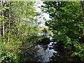 TM0023 : Bourne Pond by PAUL FARMER