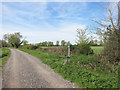 SP3000 : Footpath along Marsh Lane by Des Blenkinsopp