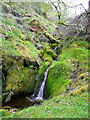 SE0908 : Mossy waterfall, Middle Clough, Meltham by Humphrey Bolton