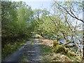 NN0635 : East Loch Etive road, Inverliver by Richard Webb