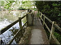 TQ4230 : Path across the pond at the National Cat Centre by Marathon